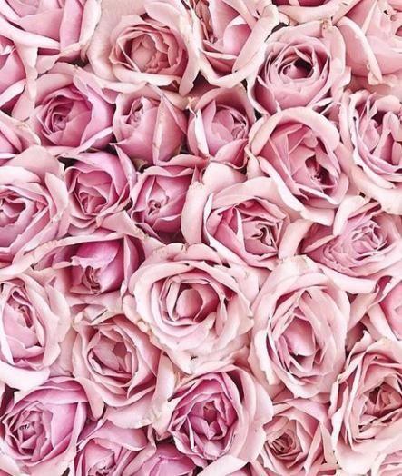 15 Ideas Vintage Wallpaper Desktop Pink Roses Vintage Wallpaper