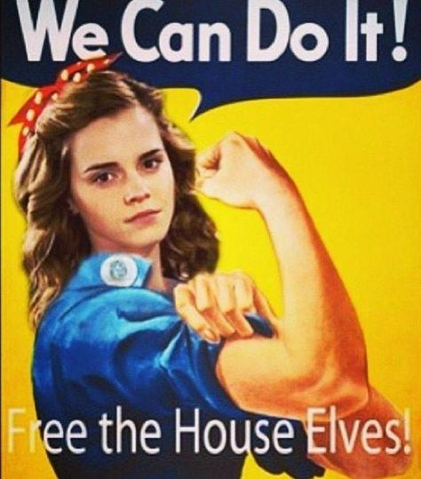Hermione continued to care for House Elves in her post Hogwarts career in the Department for the Regulation and Control of Magical Creatures.