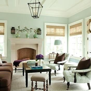 Light Mint Green Living Room Brown And Green Living Room Brown