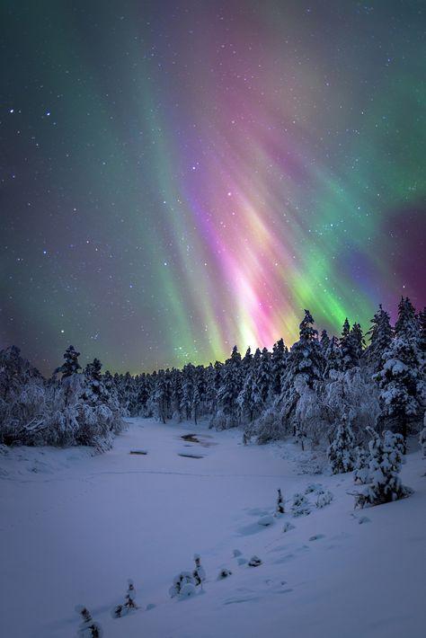 Winter Wonderland - Urho Kekkonen National park in far north of Finland. --> www.valentinovalkaj.com/winter-wonderland-in-lapland