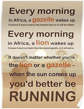 Unique design Motivational Lion Gazelle Quote Wall Decor Poster fast US shipping