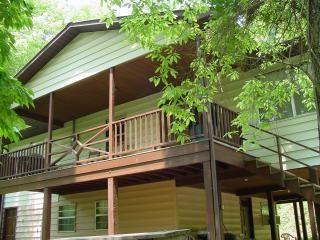Cabin Rentals Near Bryson City Nc Pet Friendly Cabins Condos And Lofts Architecture Romantic Cabin Pet Friendly Cabins