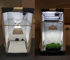 Growing Weed Indoors the Easy Way & The Cash Crop ® grow box is the perfect personal grow system. It ...