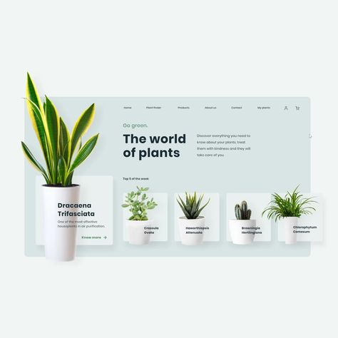 Plants Website Animation