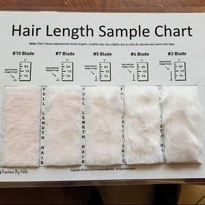 Shave Blade Sample Chart For Grooming Etsy In 2020 Dog Grooming Grooming Dog Grooming Business