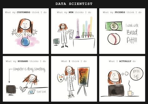 What A Data Scientist Does Infographic Data Scientist Data