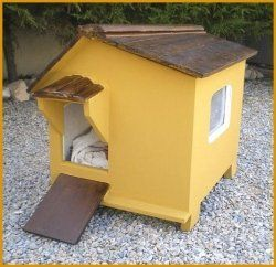 This lens is going to show you how easy it is to build your own cat house.    You don't need to be a master carpenter or building designer, all...