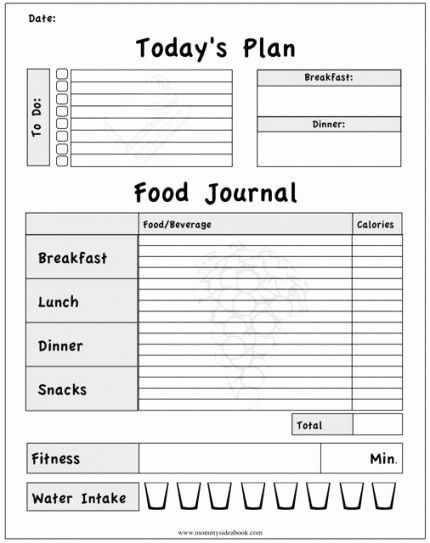 Printable Food And Exercise Journal Template Fitness Journal Printable Workout Food Food Journal