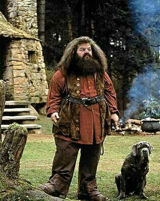Hagrid Harry Potter Cosplay Rubeus Hagrid Harry Potter Pictures