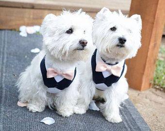 Wedding Dog Tuxedo Navy Dog Wedding Attire Dog Wedding Outfit