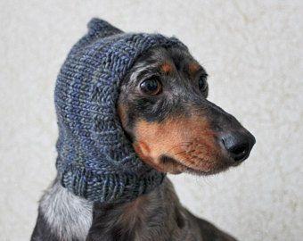 Knitting Pattern Mini Dachshund Dog Wrist Warmers Pet Etsy Dog Hat Crochet Dog Clothes Dog Clothes