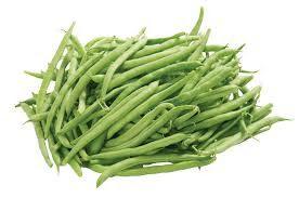 اعداد الموضوع مدونة السنا تعد الفاصوليا من المحاصيل الصيفية التي تحتاج إلى درجات حرارة عالية لكي تنمو وعادة ما يكون النضج Green Beans Beans Snap Beans