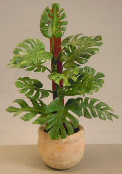 Mini Split Leaf Philodendron Mini Plants Paper Flowers Flower