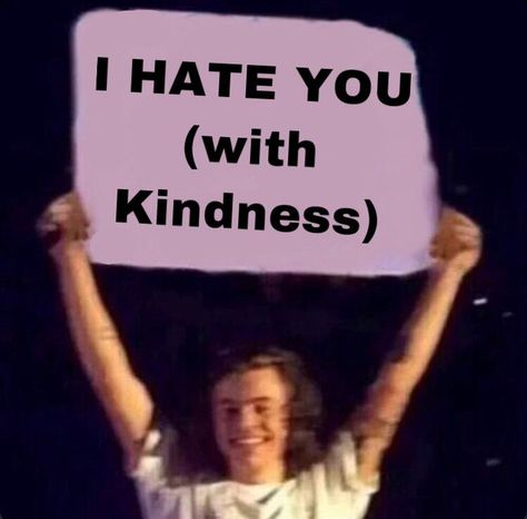 Really Funny Memes, Stupid Funny Memes, Funny Relatable Memes, Harry Styles Memes, Harry Styles Pictures, Harry Styles Snapchat, One Direction Humor, One Direction Pictures, Direction Quotes