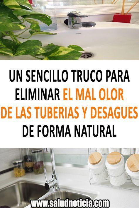 Como Eliminar El Mal Olor De La Alfombra Un Sencillo Truco Para Eliminar El Mal Olor De Las Tuberias Y