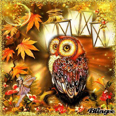 Owl Autumn challenge 3