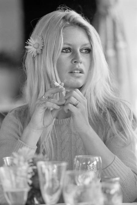 Brigitte Bardot   Brigitte bardot young, Brigitte bardot