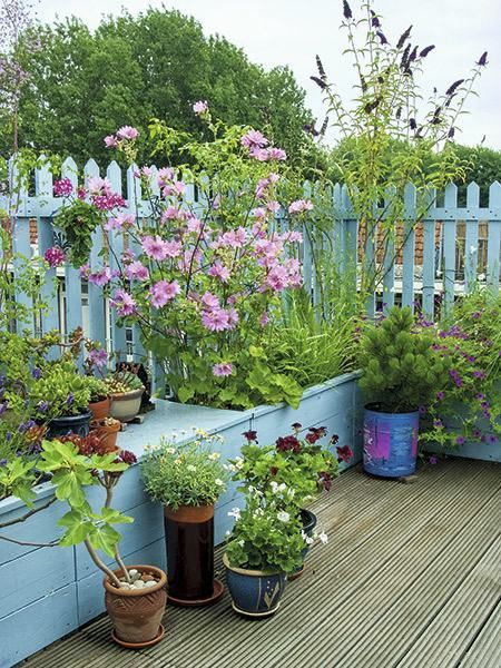 Container Gardening Ideas Desgins Small Garden Decking Ideas