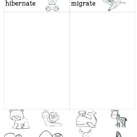 Winter Animal Hibernation Worksheets Kindergarten Worksheets Art Worksheets Printables Wristband Template Hibernation worksheets for kindergarten