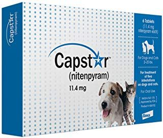 Novartis Capstar Flea Tablets For Dogs And Cats Flea Treatment Dogs Fleas