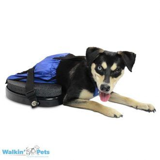 Mobility Aid For Dogs Walkin Scooter Chien