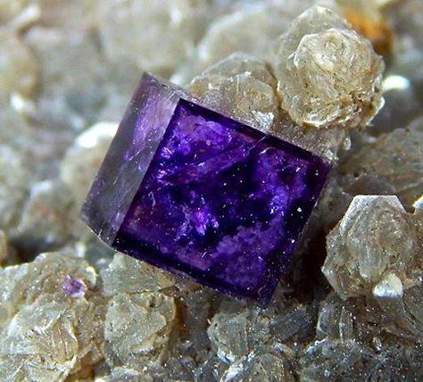 Fluorite on Muscovite From Yaogangxian Mine, Chenzhou Prefecture, Hunan Province, China