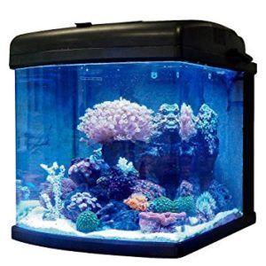Top 7 Best Nano Reef Tanks In 2020 Reviews Comarison Aquarium Coral Fish Tank Fish Tank