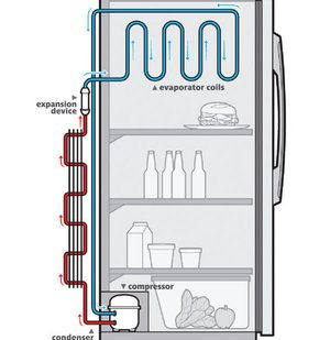 How Does A Refrigerator Work Refrigeration And Air Conditioning Refrigerator Repair Refrigerator