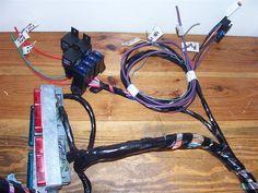 Vortec 4.8/5.3/6.0 Wiring Harness Info | Ls engine, Ls ... on cavalier wiring harness, k20 wiring harness, camaro wiring harness, toyota wiring harness, c12 wiring harness, k1500 wiring harness, nova wiring harness, mercury wiring harness, gmc truck wiring harness, chevy wiring harness, hhr wiring harness, c3 wiring harness, e2 wiring harness, monte carlo wiring harness, b2 wiring harness, el camino wiring harness, silverado wiring harness, k10 wiring harness, corvette wiring harness, dodge wiring harness,
