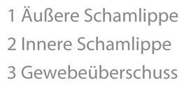 Schamlippe Category:Vulvas