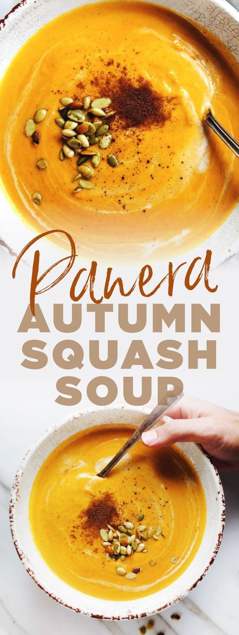 You Have Meals Poisoning More Normally Than You're Thinking That Copycat Panera Autumn Squash Soup - Comforting Flavor, Loaded With Vegetables, And An Easy Slow Cooker Soup Recipe Slow Cooker Soup, Slow Cooker Recipes, Cooking Recipes, Beef Recipes, Chicken Recipes, Copycat Recipes, Recipies, Fall Dinner Recipes, Fall Recipes