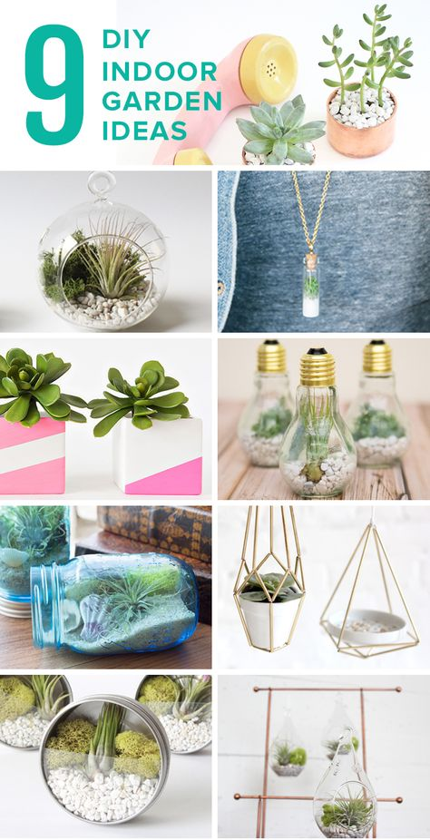 Anything but ordinary, these DIYs let you create an indoor oasis.