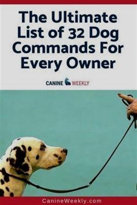 Dog Training Come Dog Training Videos Free Coyote Predation On