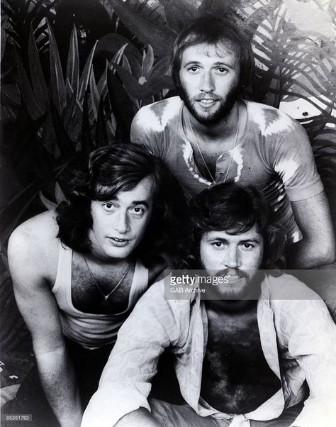 Photo of BEE GEES; Group portrait - Robin, Maurice and Barry Gibb