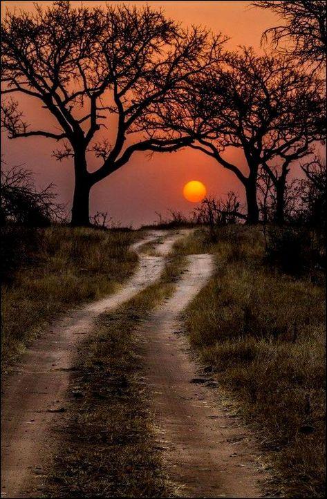 Senhor eu sei que o caminho é difícil, mais eu irei até o…