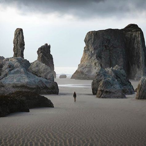 Repost Epic columns scatter along the coastline we explored for while. The evening was spent looking into the many tide pools each its own miniature world. The coast always provides endless adventure. Oregon Vacation, Oregon Road Trip, Oregon Trail, Oregon Coast, Bandon Oregon, Alaska, Baja California, Cool Places To Visit, Places To Travel