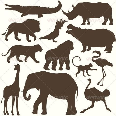 #Tropical #Animals  Vector Set of Tropical Animals Silhouettes