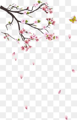 Cherry Branches Decoration Plant Png And Vector With Transparent