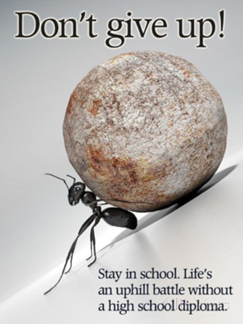 No te des por vencido. Permanecer en la vida escolar es una batalla cuesta arriba sin diploma de secundaria Don't Give Up Art Print at AllPosters.com