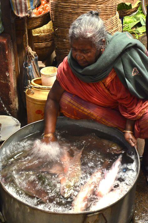 Really fresh fish at the Manicktala Fish Market, Calcutta