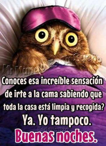 Mejores 40 Imagenes De Buenas Noches Chistosas Mejores Imagenes Funny Spanish Jokes Sarcasm Humor Spanish Humor