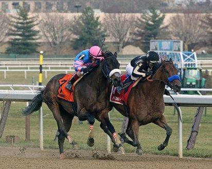 Marley S Freedom 1 With Mike Smith Win The 79th Running Of The Go For Wand Giii At Aqueduct On December 1 2018 Over Come Danc Horse Profile Horses Marley