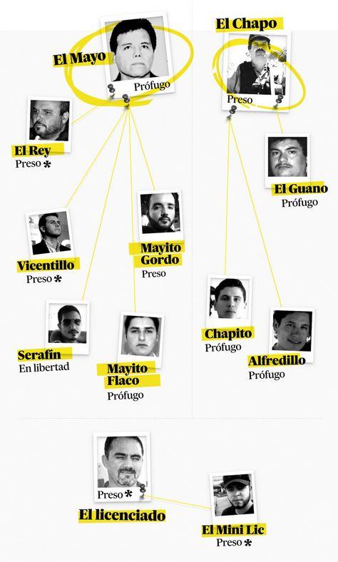 33 Ideas De Historia Chapo Guzman Sinaloa Cartel Mexico Narco