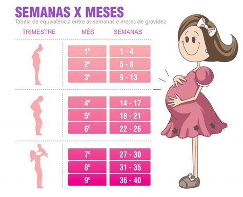 Tabela De Equivalencia Entre Semanas E Meses De Gravidez