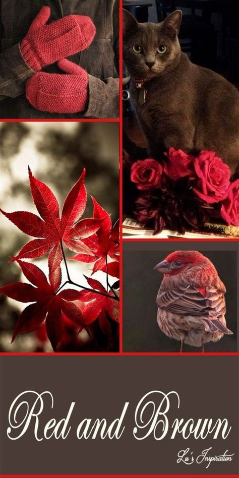 RED AND BROWN ~~ #collageboard RED AND BROWN ~~