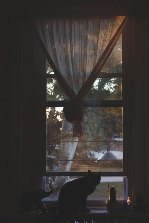 I love waking up before everyone else. It's just me and the sun, which I get to watch slowly peek above the trees for its A.M. debut. This fall, I've made myself a new routine. For a long time, my habits fell somewhere between a morning person and night-owl status. Always going to bed a