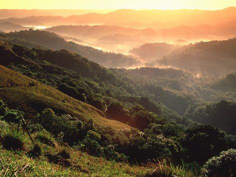 Buenos dias, good morning. Amanecer en El Yunque Puerto Rico | Taille : 400x300