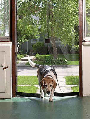 Pin On Entry Foyer Doors