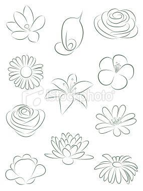 Set Of Flowers Vector Illustration Flower Drawing Drawings Art Drawings
