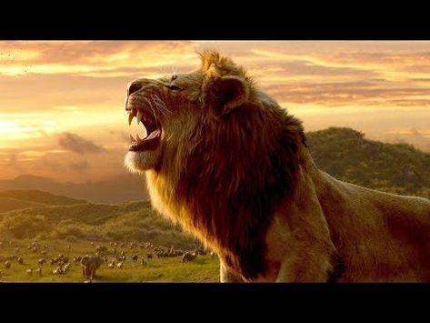 Pelicula completa del rey leon 2020